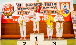 VII Grand Prix Śląska Polsko-Czeskiego Głubczyce 2016 (WKF)