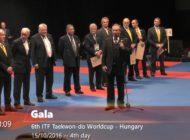 Medale na Pucharze Świata w Budapeszcie