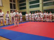 Podsumowanie roku karate